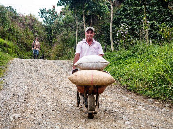 Kolumbialainen kahvityöntekijä