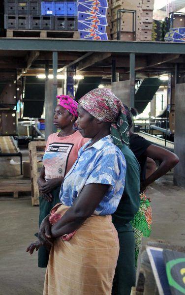 Naisia mosambikilaisessa tehtaassa
